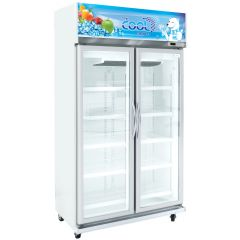 The Cool Upright Cooler ALEX 2P Jumbo