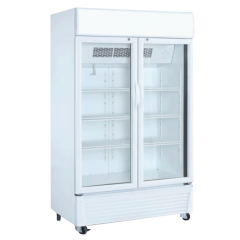 The Cool Denise Double Door Upright Cooler DENISE 600M